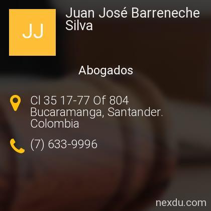 Juan José Barreneche Silva