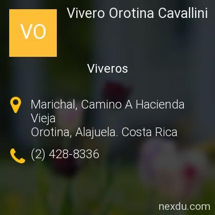 Vivero Orotina Cavallini