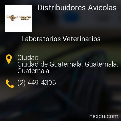 Distribuidores Avicolas