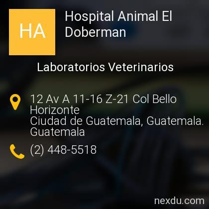 Hospital Animal El Doberman
