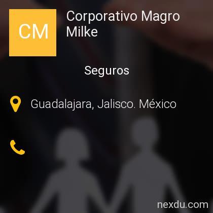 Corporativo Magro Milke